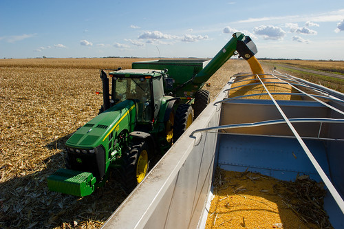 Corn Harvest | by UnitedSoybeanBoard