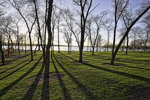 park trees sunset lake alexandria minnesota shadows
