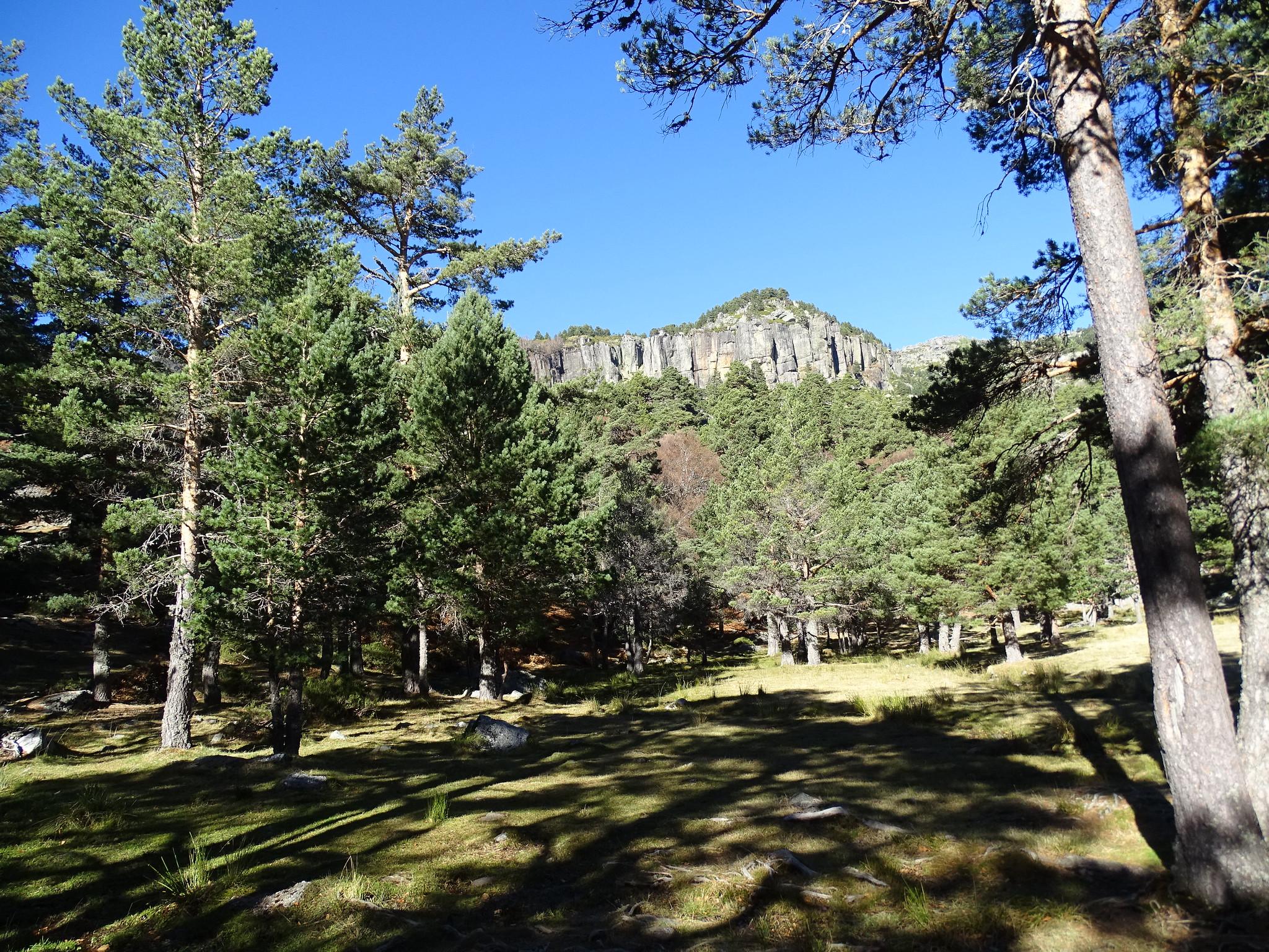 Parque Natural Sierra Urbión Soria
