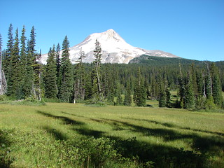Mt. Hood from Elk Meadows