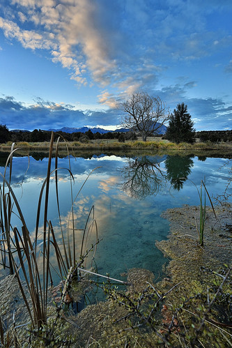 sunset newzealand reflection landscape pond mollybrown newcastletrack