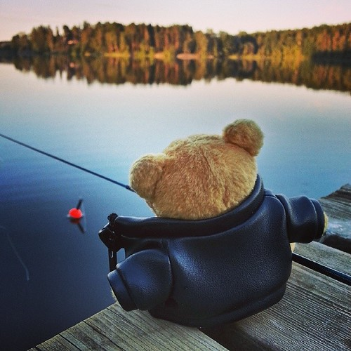 bear sunset summer vacation lake holiday fish leather suomi finland square toy fishing finnland teddy calm squareformat teddybear fisher unknown leatherjacket finlandia フィンランド finlande finlândia deadcalm finnország finlanda finlàndia финляндия finnlando iphoneography فنلندا instagramapp uploaded:by=instagram foursquare:venue=4ff41d6ae4b0b3e697ac3e27