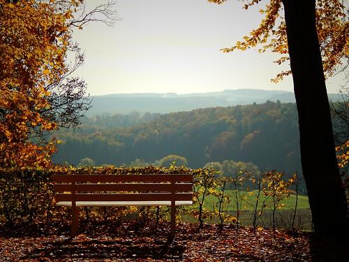 caledoniafan autumn fall herbst lichtenwalde lichtenwaldecastle barockschlosslichtenwalde baroquegardenslichtenwalde park viewpoint view aussichtspunkt aussicht nikon nikoncoolpixl820 nikoncoolpix landscape landschaft nature natur hbm bench bank