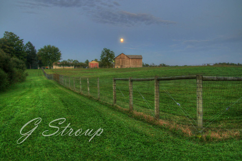 Harvest Moon Over 'The Good Life Alpaca Farm'