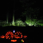 Night driving in the jungle
