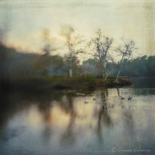 trees sunset lake reflection lensbaby textured composer kerstinfrank lenabemanna