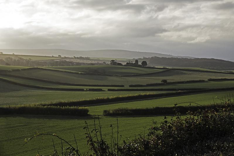 Somerset Farmland
