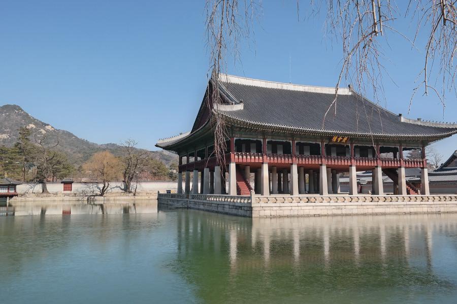 Nguyen, Anna; South Korea - Episode 3 (4)
