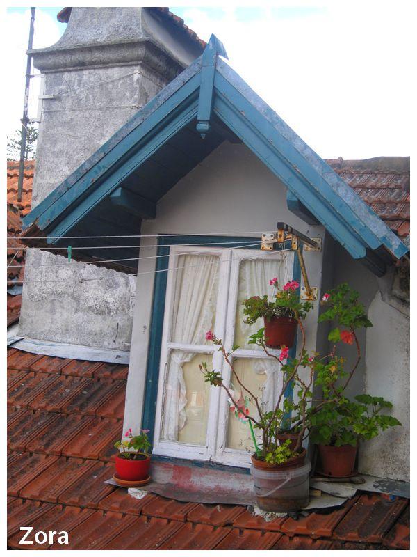 Fenêtre pitoresque à Sintra