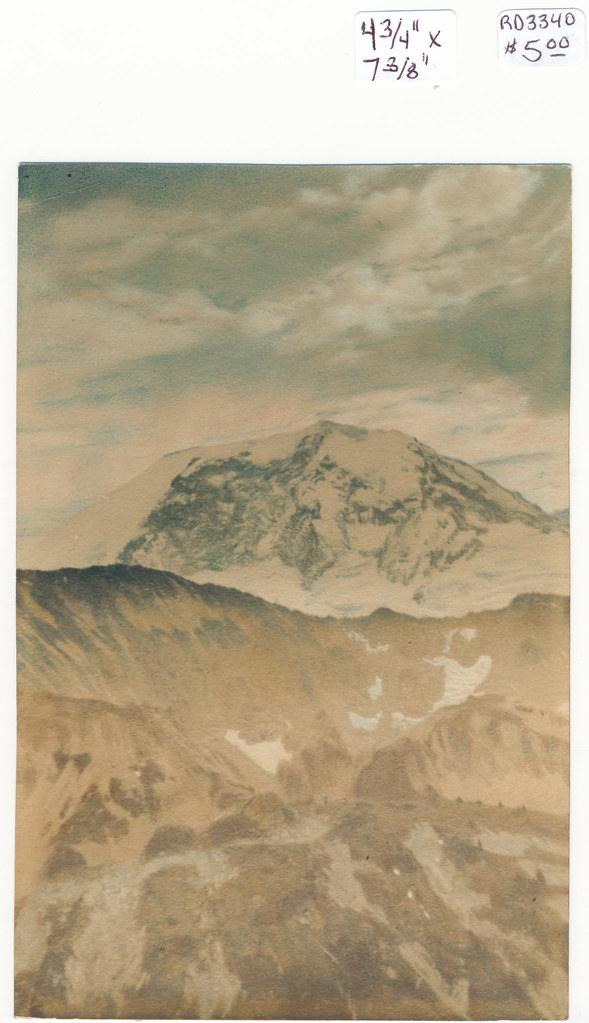RD3340 Mountain Print