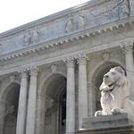 NYPL + lion