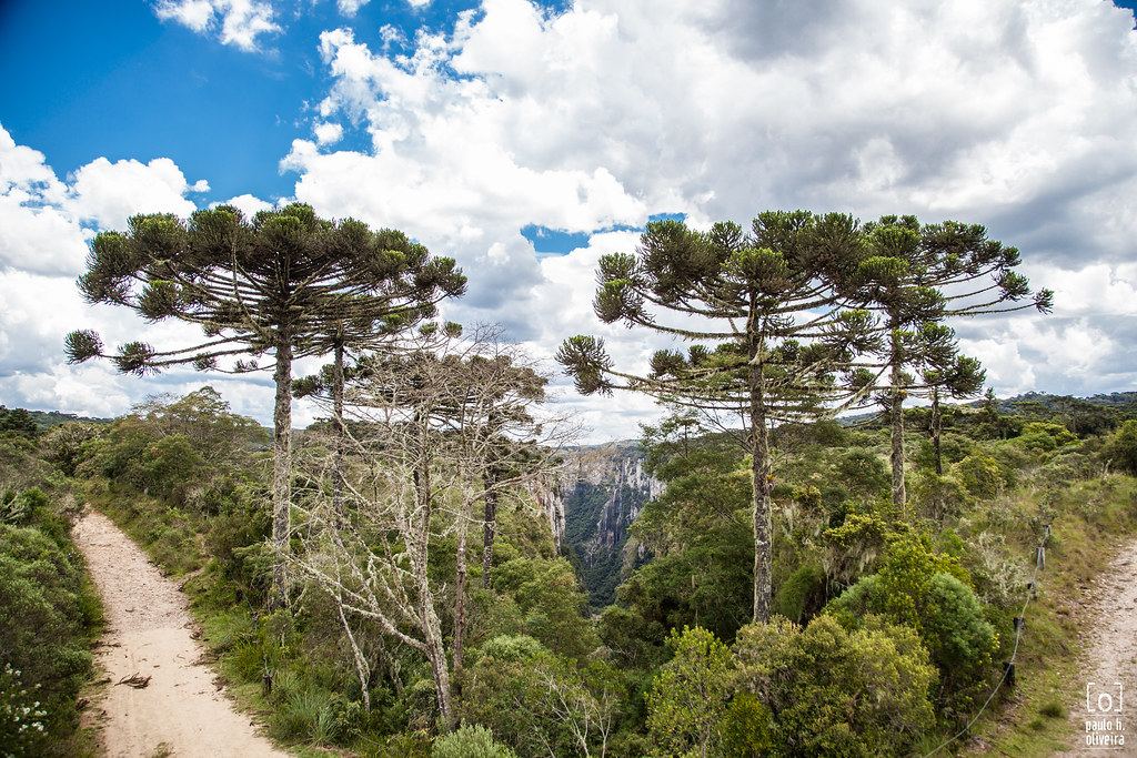 """""""Canyon Itaimbezinho"""", Cambará do Sul-RS_12.jpg"""