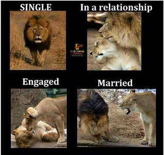Single , In A Relationship , Engaged , Married !!