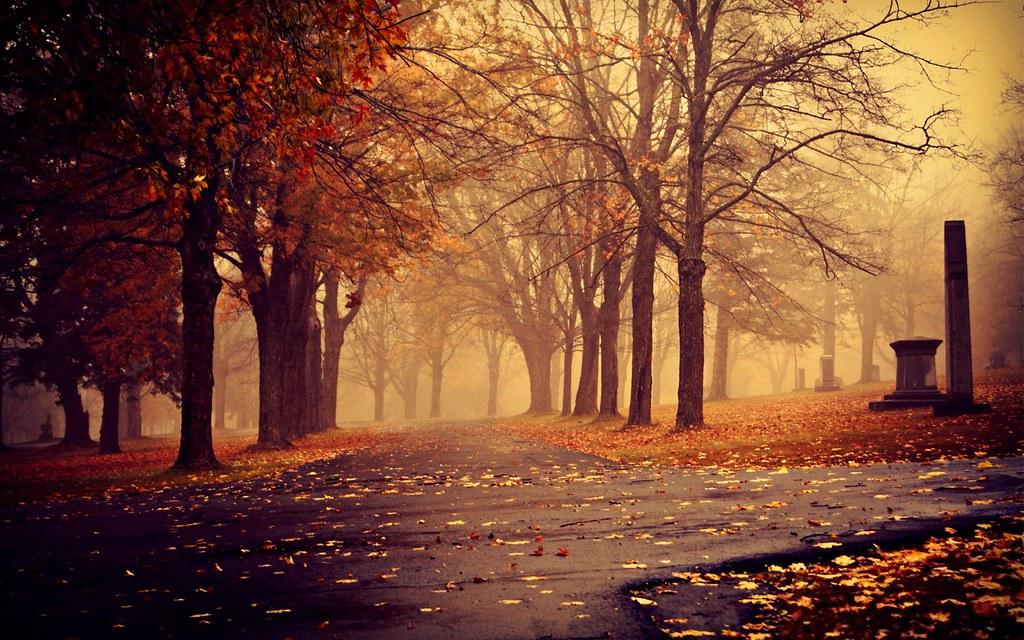Autumn Desktop Background Hd Wallpapers Bhl1 Flickr