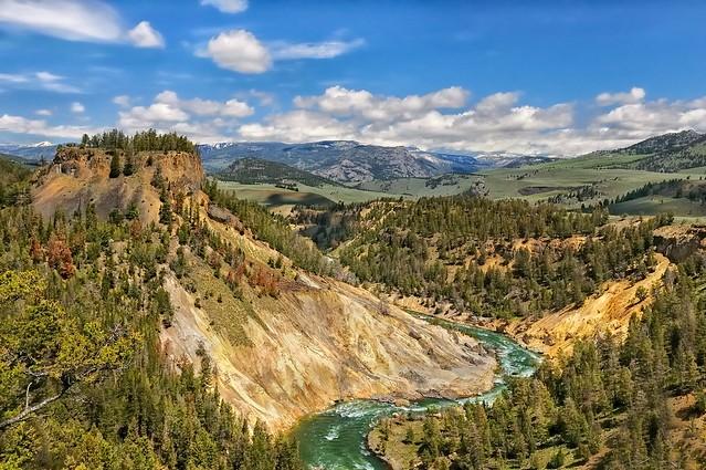 A Yellowstone Landscape