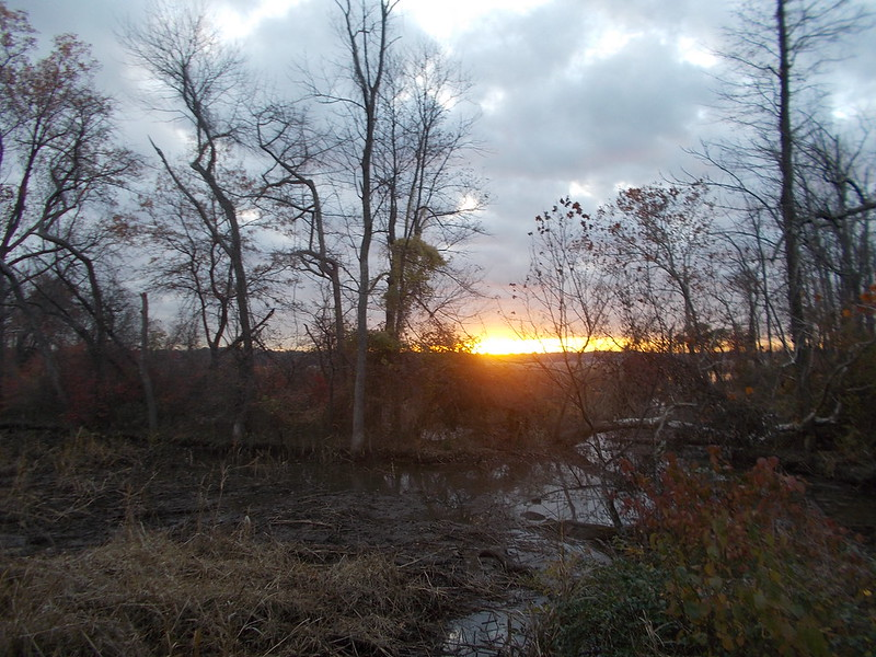 Dyke Marsh Sunrise 11/5/2013