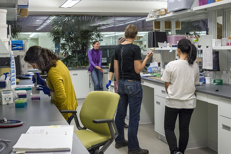 _WCB7414 DNA sequencing SRC