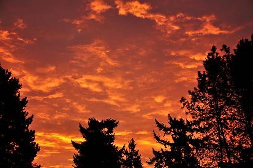 oregon sunrise portland