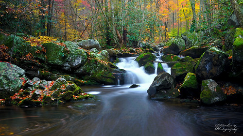 autumn mountains color fall abandoned nature water leaves waterfall moss rocks stream long exposure postcard logging smoky cascade smokies tremont gsmnp