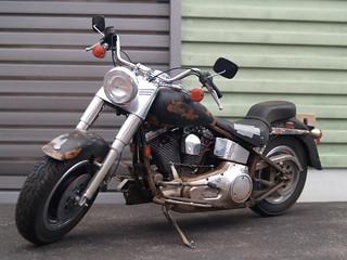 Harley Davidson FLSTF Fatboy | by Camwader Jon