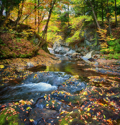 stowe vermont sterlingbrookhdr verticalpanoramaautumn fall colorsfallcolorsstream