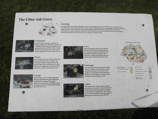 The Ulster Ash Grove at the National Memorial Arboretum