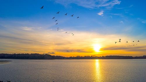 sunset lake water a65 sonyalpha danversmass mygearandme