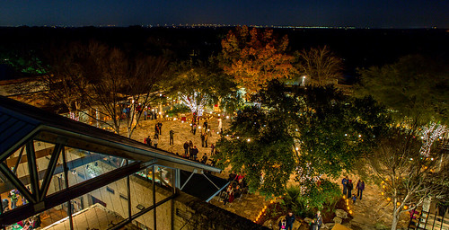 Wildflower Center Christmas | by ejmc