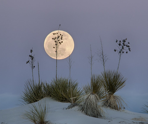 Moon at White Sands | by snowpeak