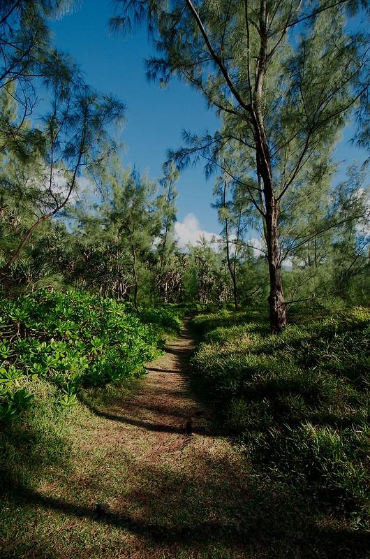 Nature Réunion