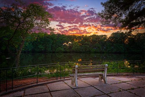trees sunset photoshop bench maryland salisbury egret lightroom photomatix ericbwalker premierehdr deersheadhospitalcenter