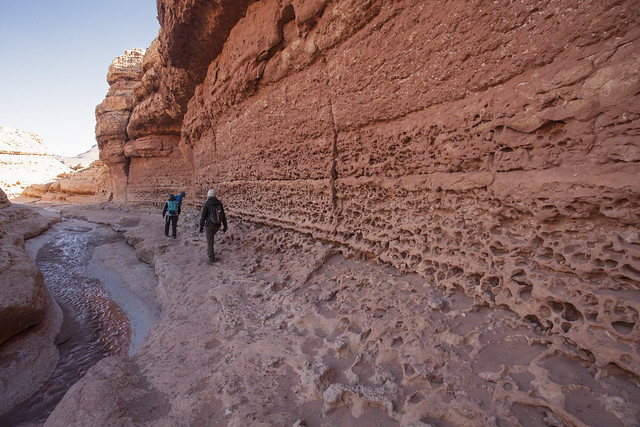 Cathedral Wash-Grand Canyon