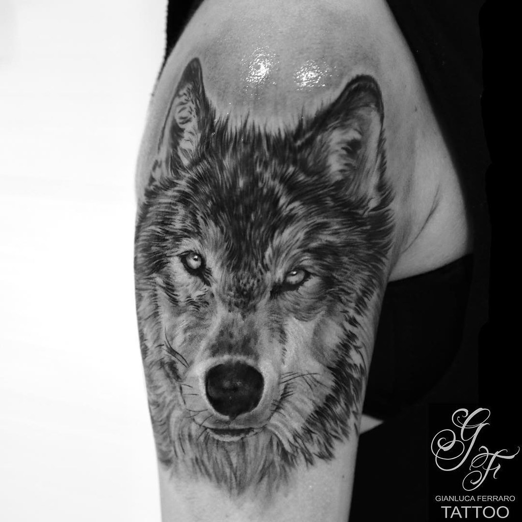4148f730d Small Portrait Wolf Gianluca Ferraro Tattoo Artist Guys it's time to go back  to America.