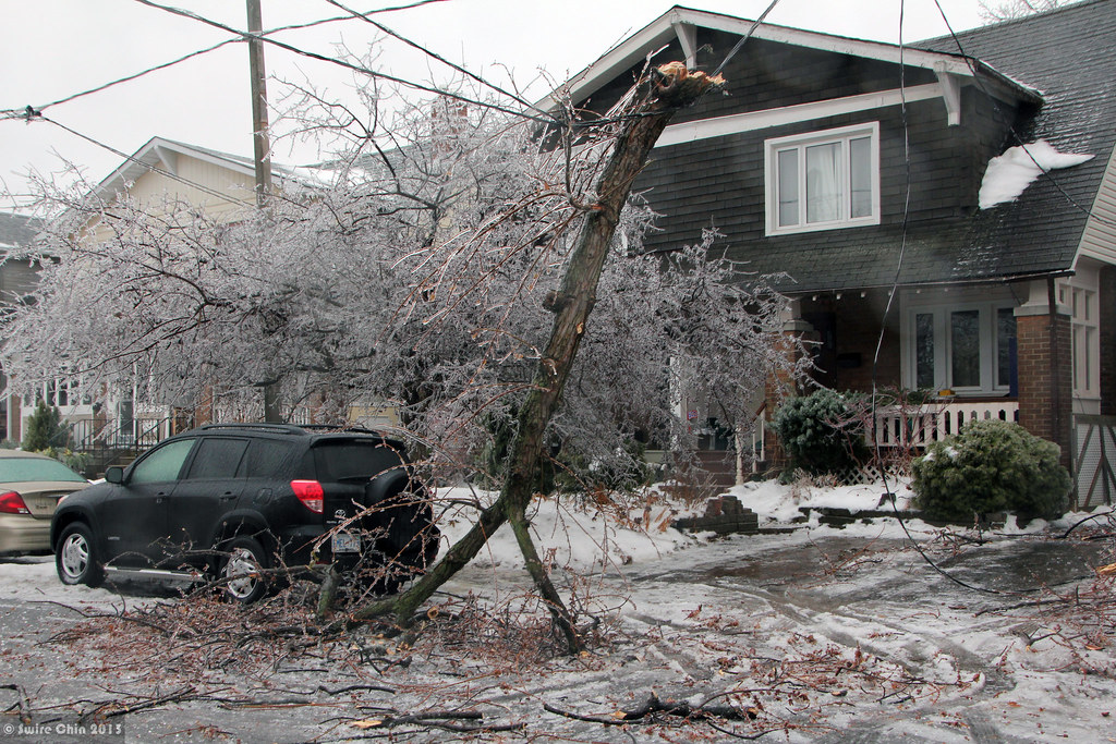 Ice storm damage | The ice storm caused tens of millions ...