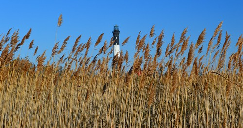 lighthouse 1001nights fireisland mygearandme mygearandmepremium mygearandmebronze mygearandmesilver mygearandmegold mygearandmeplatinum mygearandmediamond