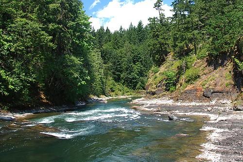 The Cowichan River flows through Cowichan River Park, Cowichan Valley, Vancouver Island, British Columbia, Canada