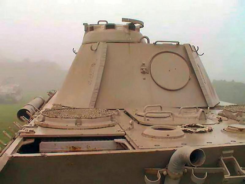 Panther Ausf.D (2)