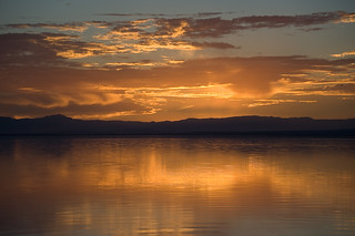 golden twilight | by oliver.dodd