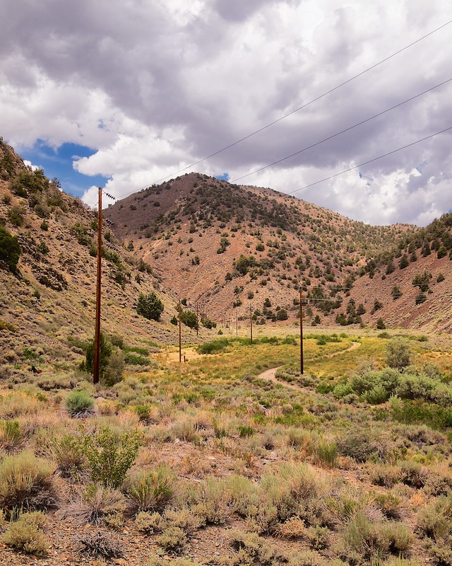 Inyo National Forest, White Mountains, Roberts Ranch, Pasture