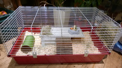 Ferplast 100 cage for two guinea pigs | by Su--May