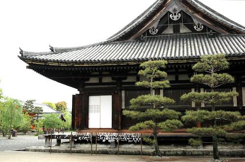 Japan & South Korea 2014 - 1032