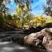 Samuel Forsyth- Boulder Creek #2