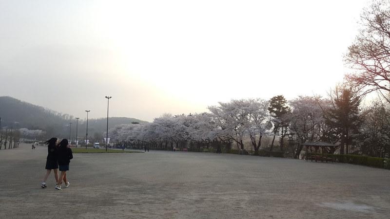 Nguyen, Anna; South Korea - Episode 12 (1)