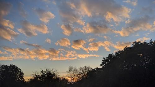 sunrise dawn 365mgmosaic