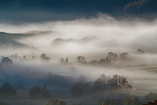 The Vale in the Mist