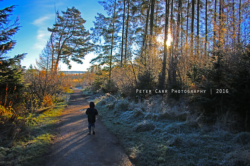 petercarrphotography swinsty swinstyreservoir yorkshirewater northyorkshire yorkshire nature naturalworld planetearth trees walking outdoors outdoor freshair tourism frost autumn autumnal 2016 flickrpete1074 flickrpeterjcarr peterjcarr sun sunrise uk visit welcometoyorkshire