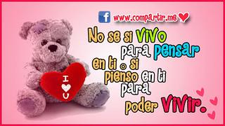 Frases De Amor 11 Imágenes Bonitas Con Frases Y Pensamien