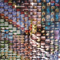 at the lomography store, Amsterdam