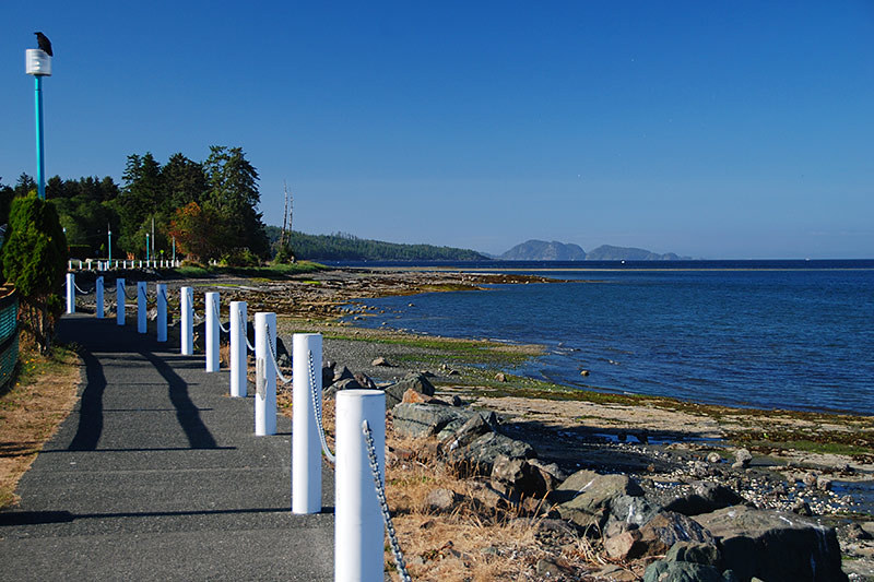 Queen Charlotte Strait in Port Hardy, North Vancouver Island, British Columbia, Canada