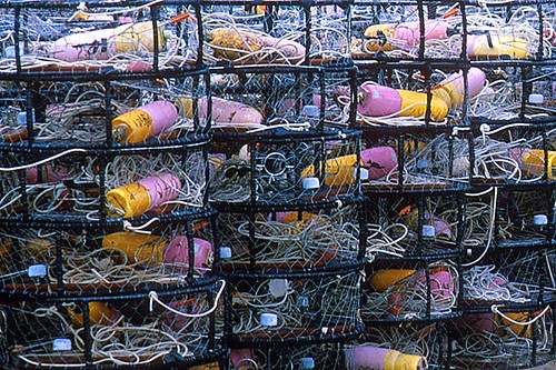 Crab Traps in Masset, Graham Island, Haida Gwaii (Queen Charlotte Islands), British Columbia, Canada